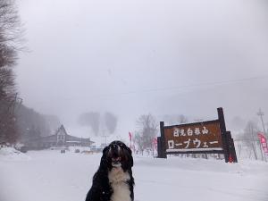 141225丸沼高原スキー場