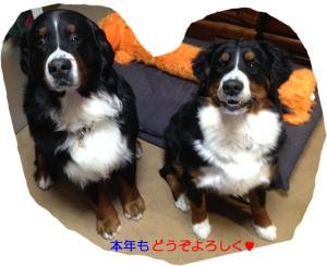 150101ハン&Nico