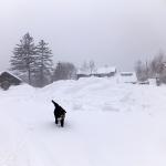 150214吹雪