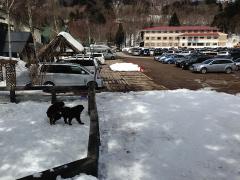 150328スキー場第3駐車場