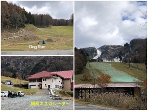 Collage_Fotorスキー場冬準備_Fotor